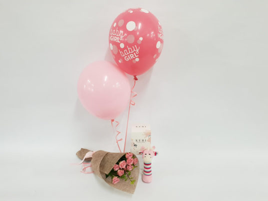 Baby Girl Gift bundle