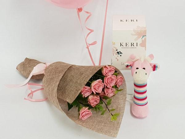 Baby Girl Gift bundle