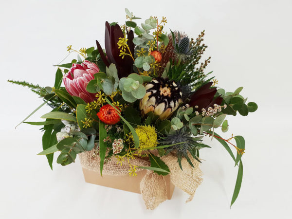large Australian native floral box