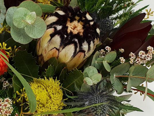 large Australian native floral box